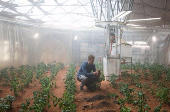 Американцы намерены вырастить картофель в условиях, приближенных к марсианским