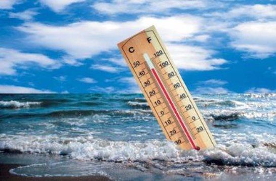 Изменение климата значительно «проредит» количество жителей на нашей планете