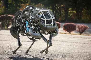 В России хотят собрать уникального боевого робота