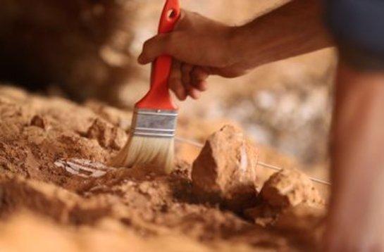 В Египте найден уникальный древний могильник
