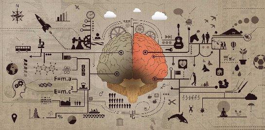 В человеческом мозге нашли участки, которые отвечают за алкоголизм