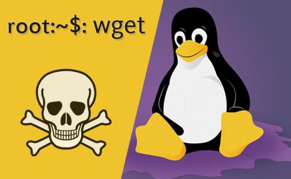Опубликован эксплоит к опасной уязвимости в GNU wget