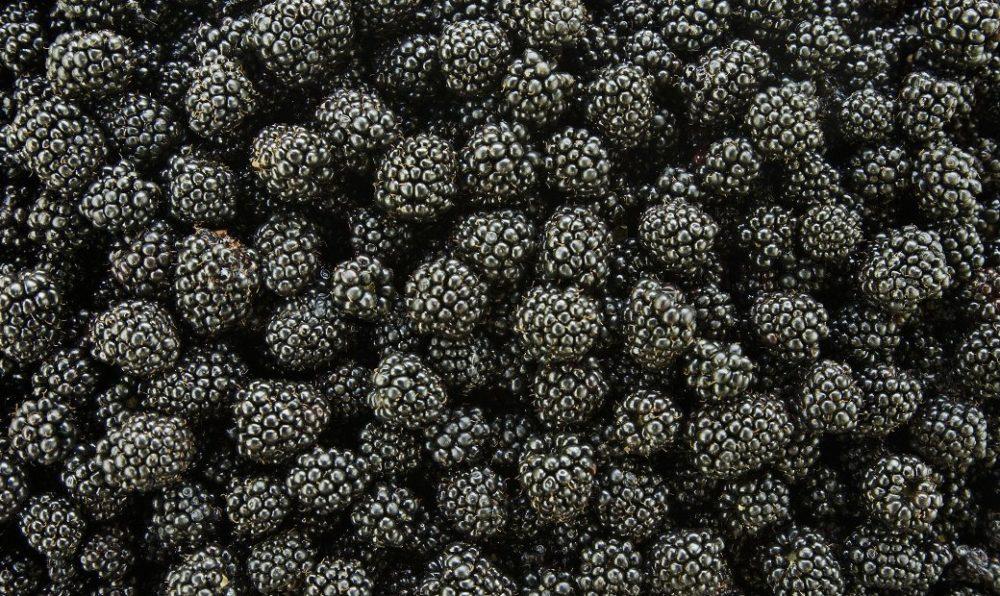 Как взламывают BlackBerry. Разбираем бэкапы «самой безопасной ОС в мире» BlackBerry 10