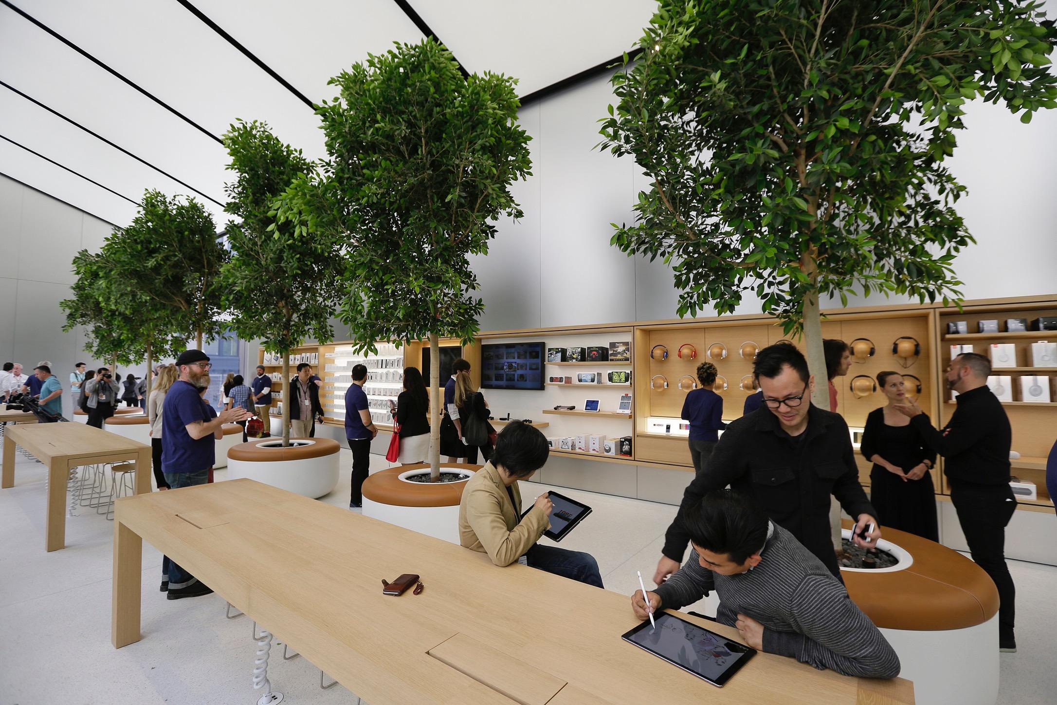 Apple запатентовала деревья
