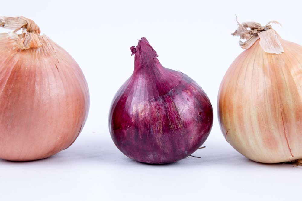 Tor Project покидает один из первых контрибьюторов