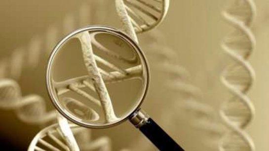 Ученые доказали, что так называемое «проклятие матери» существует на самом деле