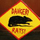 На подпольных форумах предлагается бесплатная альтернатива дорогостоящим RAT