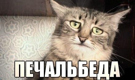 Троян-шифровальщик лишил зарплаты казанских полицейских