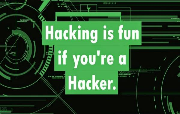 Хакер Kapustkiy взломал сайт Российского визового центра в США