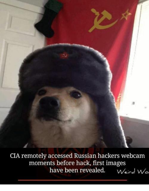 США предприняли тайные операции против России