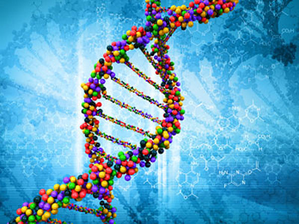 Разработан новый эффективный метод записи данных в ДНК