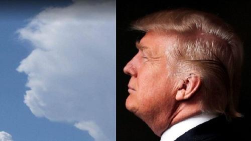 Трамп приказал правительству США переходить на облачные технологии