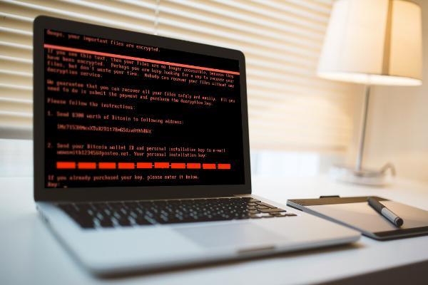 НАТО может задействовать Статью 5 в ответ на атаки WannaCry и NotPetya
