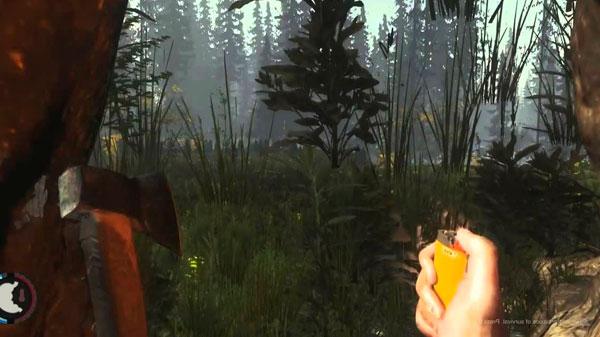 Компьютерные игры: Among the Forest